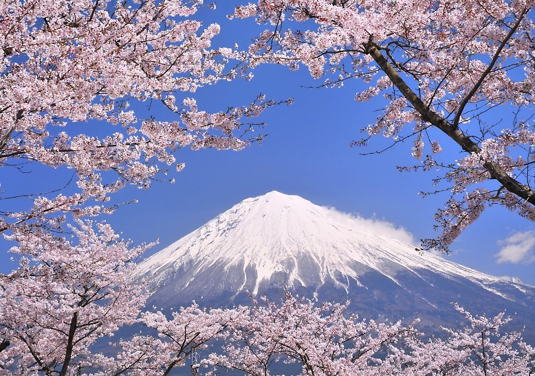 Japan ist ein vielfältiges Land. So strahlt der Fuji, der höchste Berg des Landes, vor allem majestätische Ruhe aus.