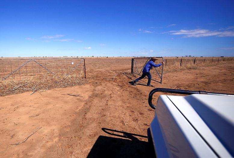 """Seit 15 Jahren lebt May McKeown auf ihrer Farm """"Long View"""" die meiste Zeit allein."""