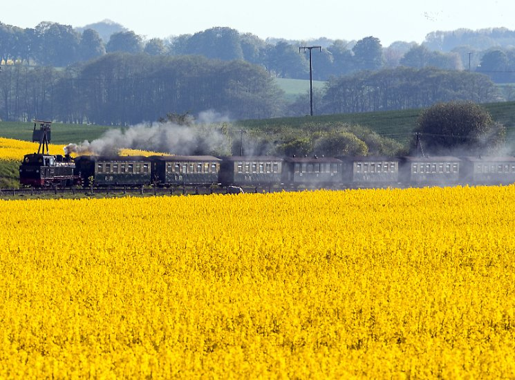 """Der """"Rasende Roland"""" - Tausende Touristen lassen sich damit Tag für Tag auf Rügen chauffieren. Sie fährt mit historischen Dampflokomotiven und Wagen, zum Teil fast 100 Jahre alt, auf einer Strecke von etwa 24 Kilometern."""