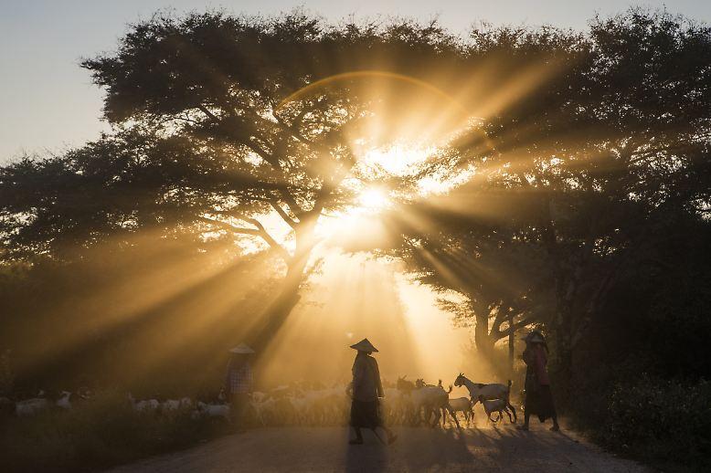 Myanmar ist eines der reizvollsten Länder Asiens. Es ist mit einer Fläche von 676.578 Quadratkilometern etwas größer als Frankreich. Reisefotograf Holger Leue zeigt Ihnen gemeinsam mit Filmemacher Lars Böhnke das Land. Manche kennen das Land noch unter dem Namen Birma oder Burma.