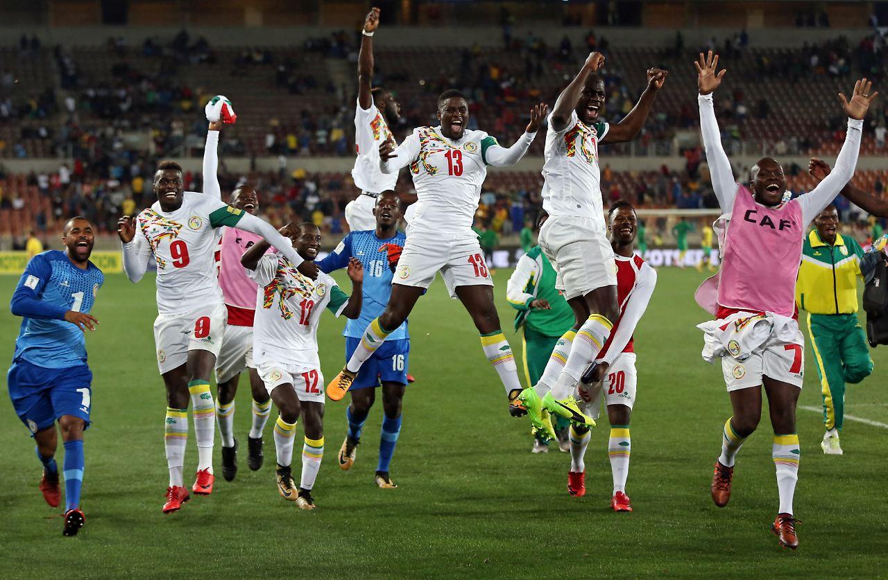 Freude nach dem Schlusspfiff Senegal fährt im kommenden Jahr nach Russland