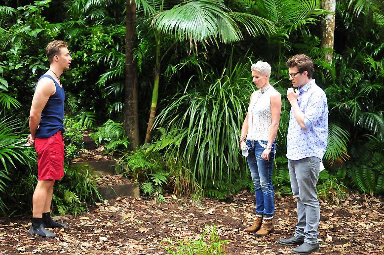 """Der 10. Tag bei """"Ich bin ein Star, holt mich hier raus"""" beginnt mit der Dschungelprüfung für David. Die Camper hoffen auf viele Sterne durch den blonden Hünen und ..."""