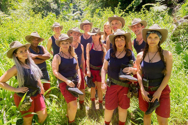Der Kampf um die Urwaldkrone tritt in die heiße Phase ein: Nach 15 Tagen im Dschungel bleiben von den ursprünglich zwölf Kandidaten nur noch drei Namen übrig.