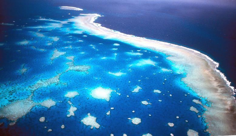 Das Great Barrier Reef ist das größte Korallenriff der Erde und wohl das eindrucksvollste.