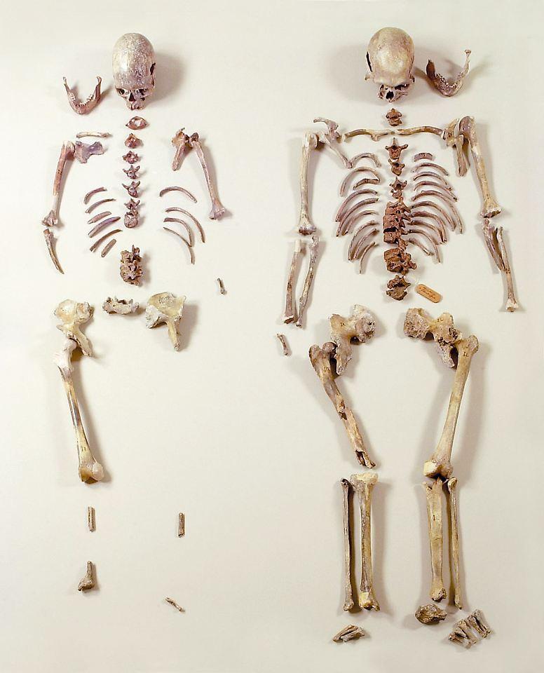 Bundesweit ältester Fund des Homo sapiens: Eiszeitmenschen bekommen ...