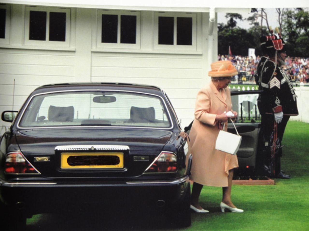 hunde und handtaschenfreundlich queen jaguar zu verkaufen n. Black Bedroom Furniture Sets. Home Design Ideas