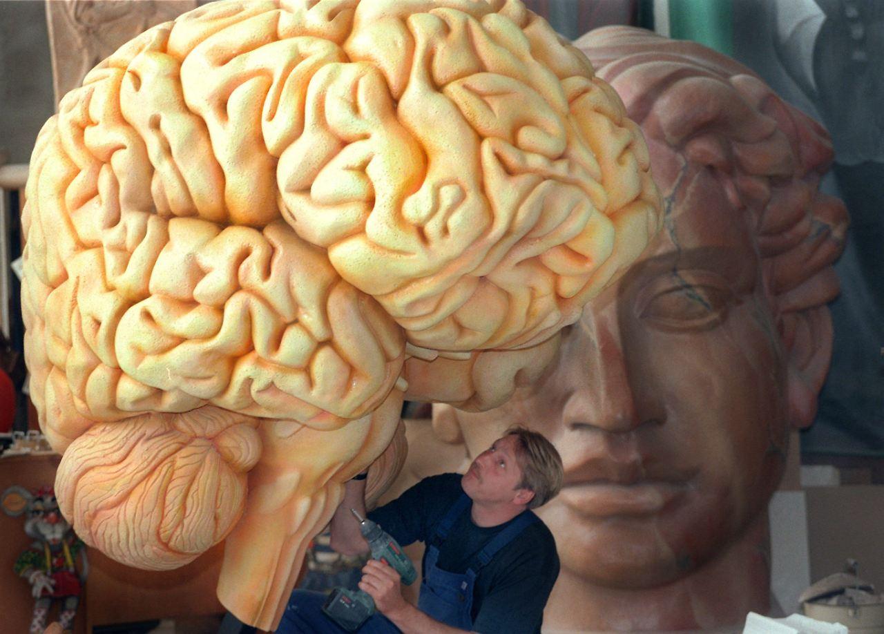 Aus menschlichem Fötus: Stammzellen ins Gehirn gespritzt - n-tv.de