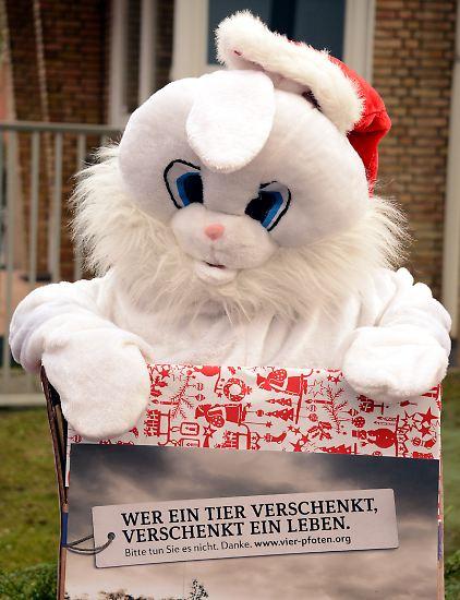 … denkt kaum einer schon daran, die Weihnachtsgeschenke für seine Liebsten zu kaufen.