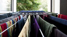 Regelmäßiges Lüften beugt Schimmel vor - das gilt vor allem, wenn Wäsche in der Wohnung trocknet.