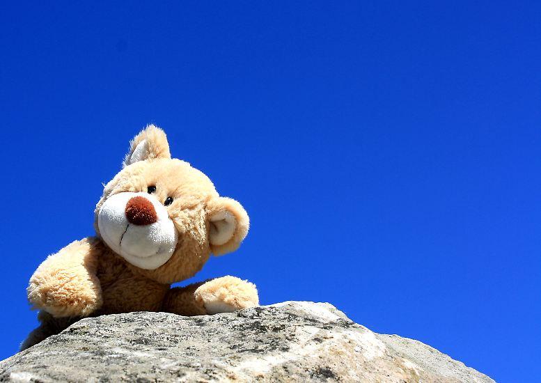 Was ist eigentlich so drin in unserem Kinderspielzeug? Ist der niedlich dreinschauende Teddy vielleicht eine Giftschleuder? Das hat die Stiftung Warentest untersucht - mit erschreckenden Ergebnissen.